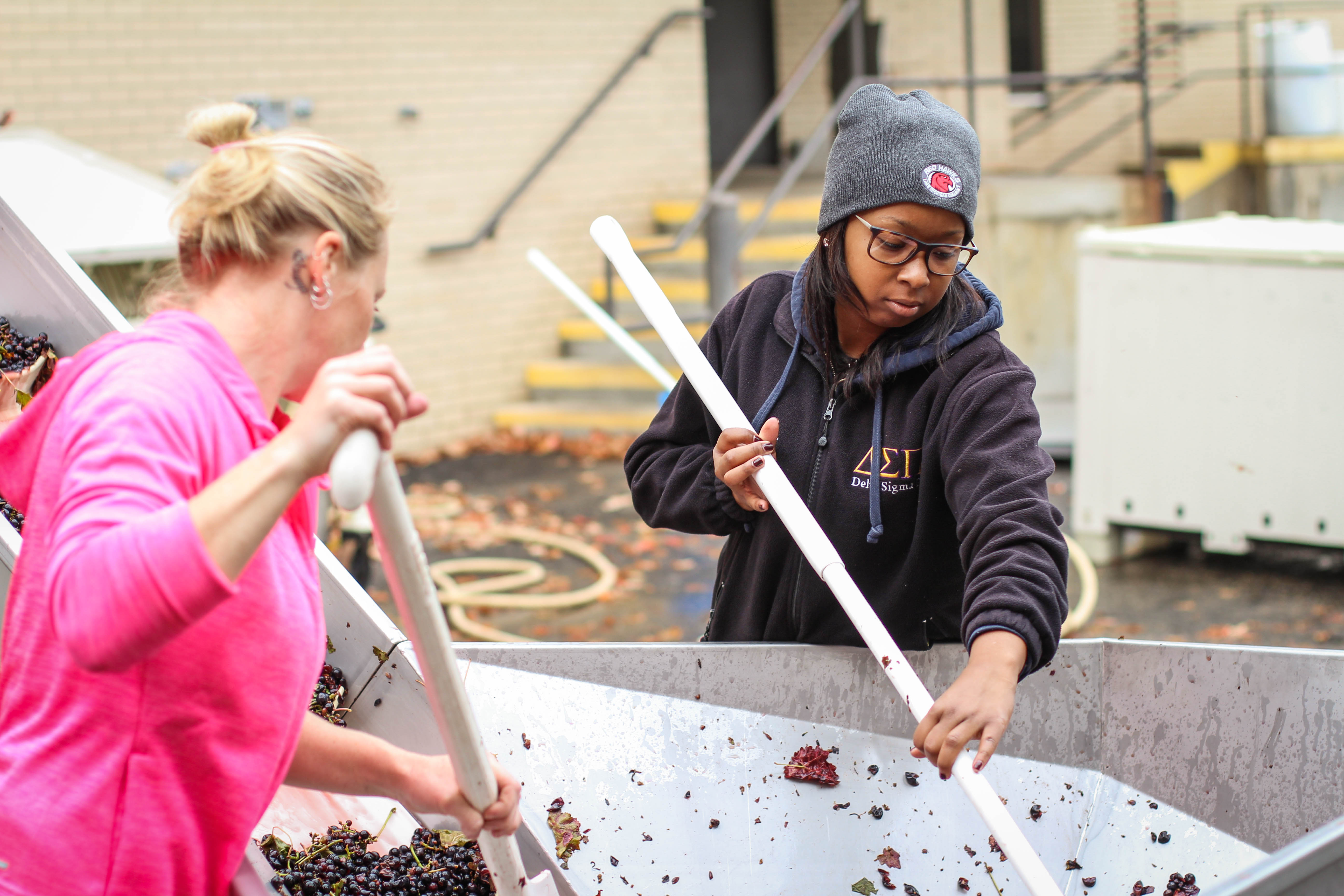 A young Black woman with a black Delta Sigma Pi sweatshirt scoops red grapes next to an older white woman with yellow hair and a pink sweatshirt.
